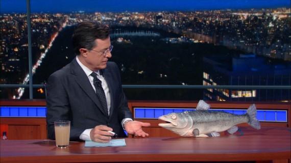 colbert-salmon